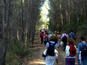 Excursions en la Reserva de VALDESERRILLAS, Benagéber, Alt Túria